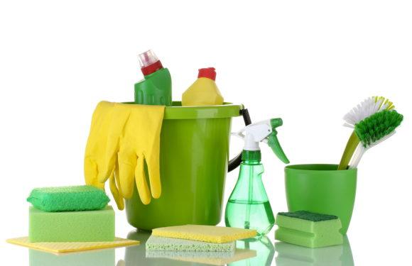 Лекція з сучасних екологічних засобів по догляду за будинком.